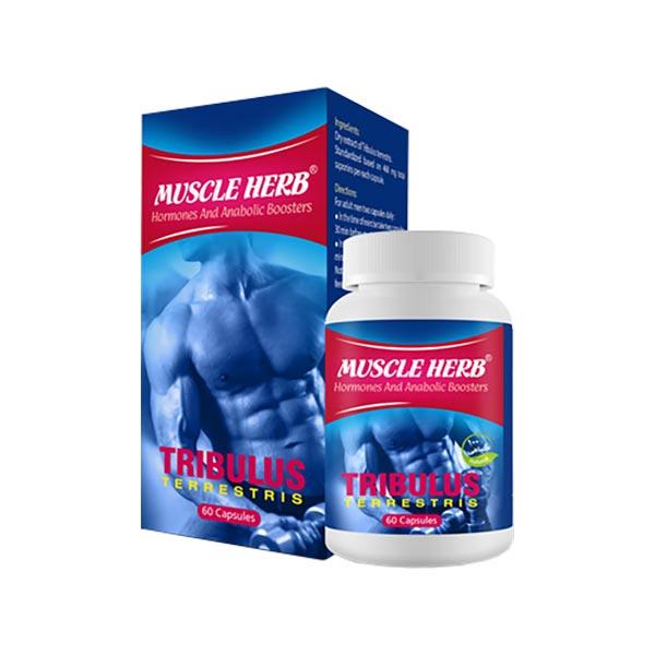 کپسول ماسل هرب تریبولس بهتا دارو | 60 عدد | افزایش و تحریک هورمون های مردانه