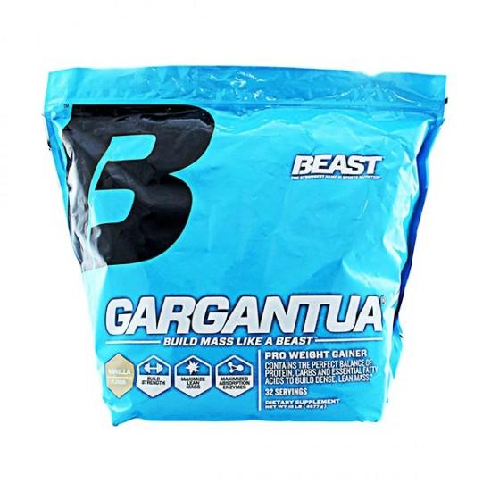 گینر گارگانچوا بیست | 4672 گرم | افزایش قدرت عضلات